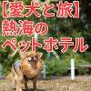 【愛犬と旅】熱海のペットホテル【2017年3月更新】
