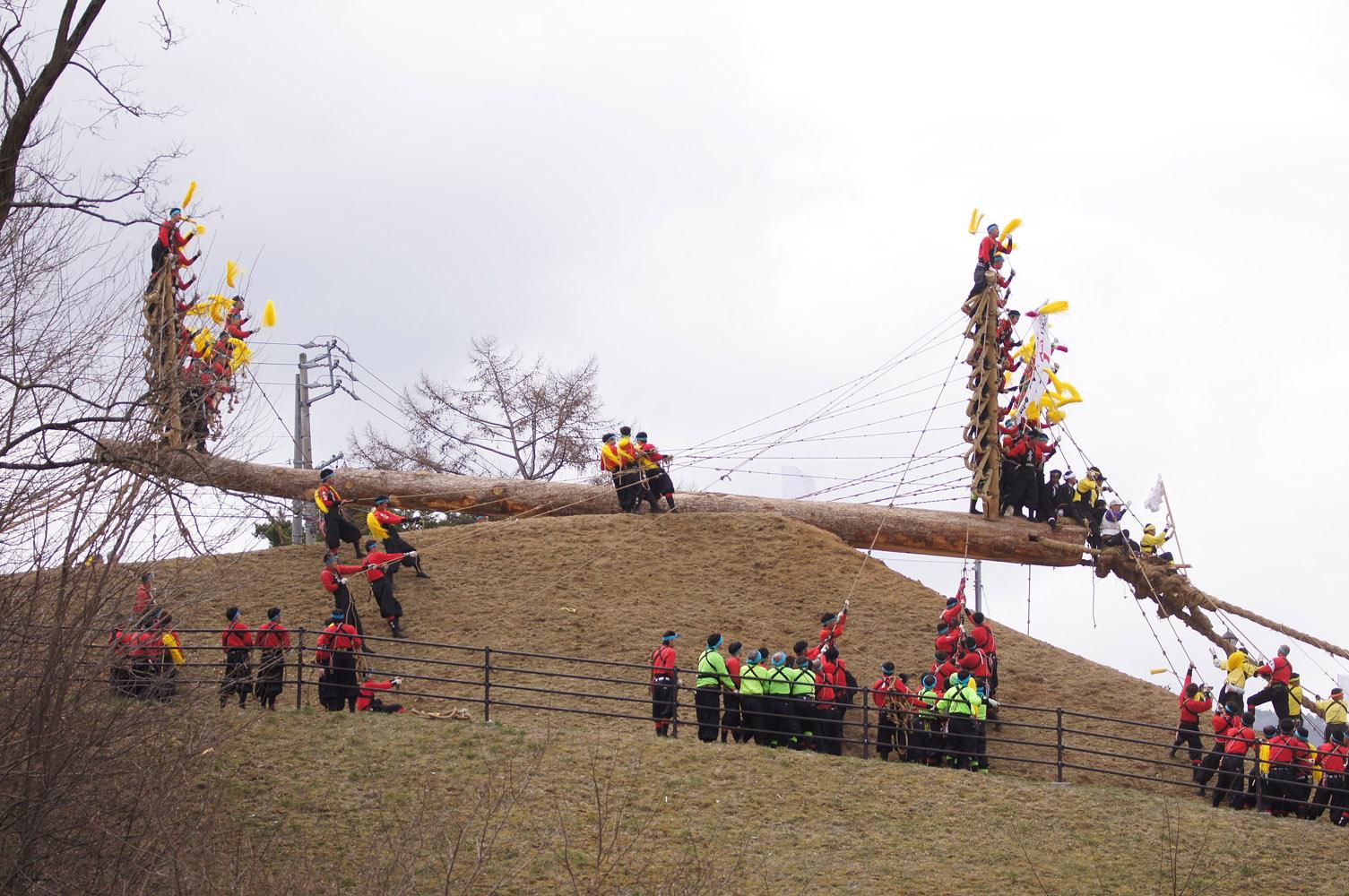 諏訪大社 御柱祭14