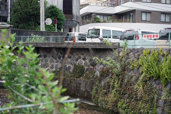 和田川沿いにある犬像