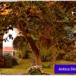 【熱海】ATAMI2030会議その3「アルベルゴ ディフーゾ」