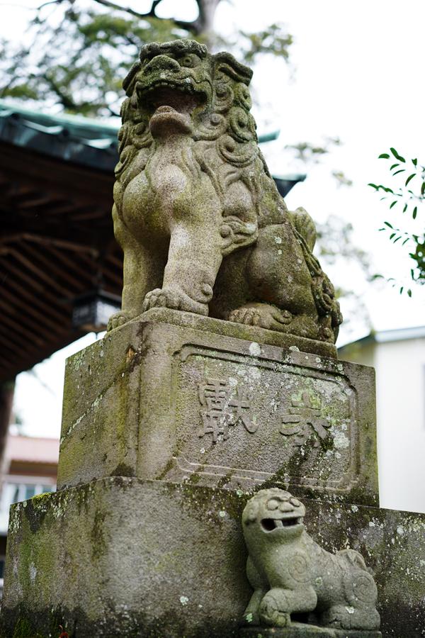 多賀神社 狛犬