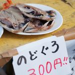 【熱海】おさかなフェスティバル