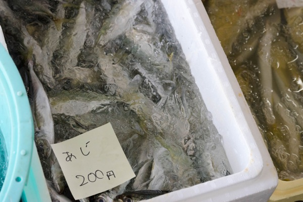 熱海魚祭り03_アジ200円