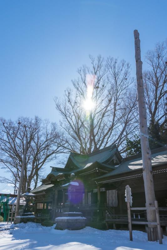 諏訪護国神社-07 御柱