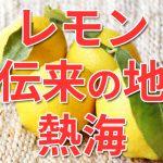 【熱海】レモンの日本伝来の地だった!?